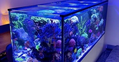 Glasabdeckung für Aquarium oder Terrarium